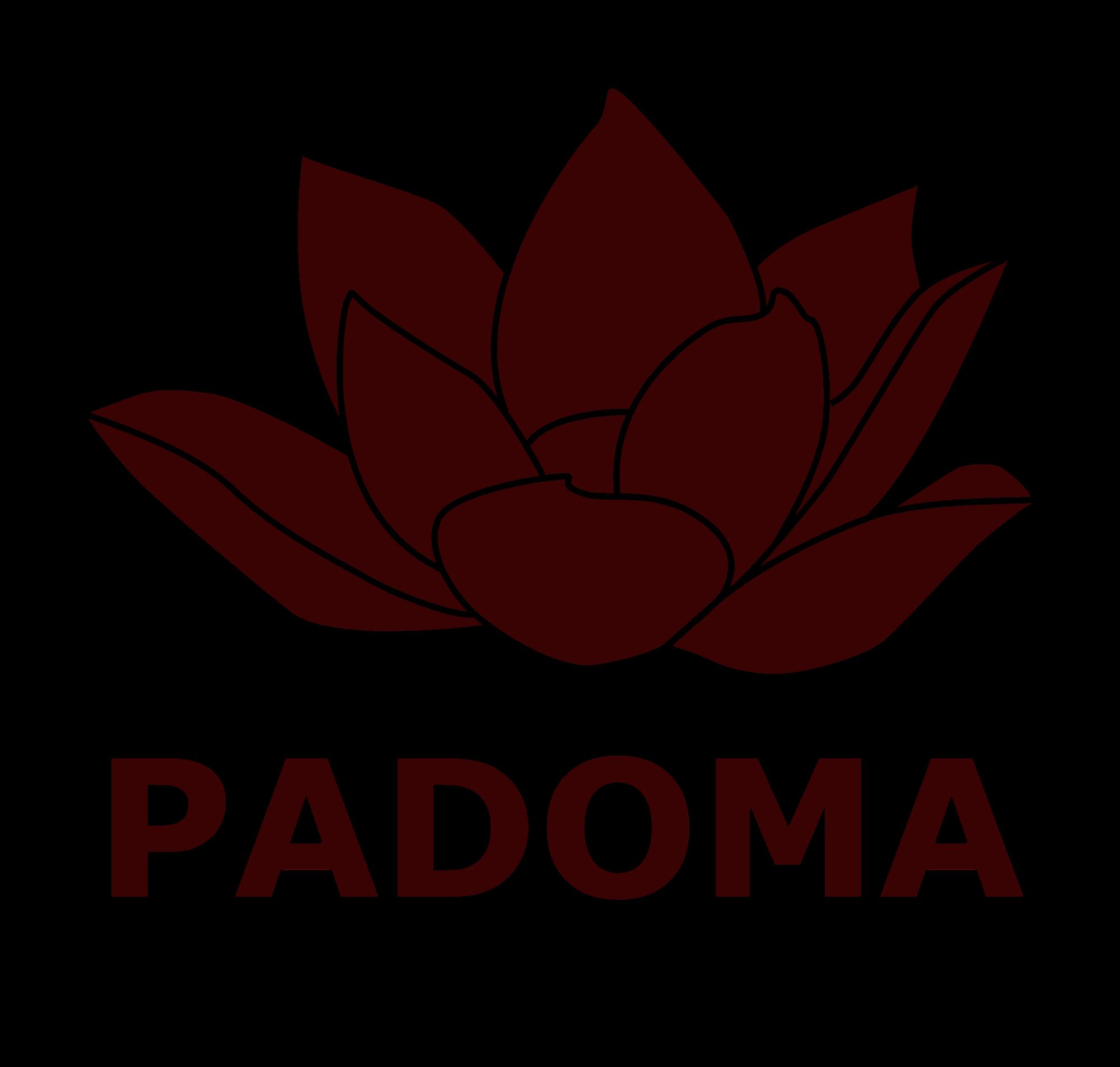 前世療法PADOMA